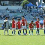 チビッコサッカーフェスティバル